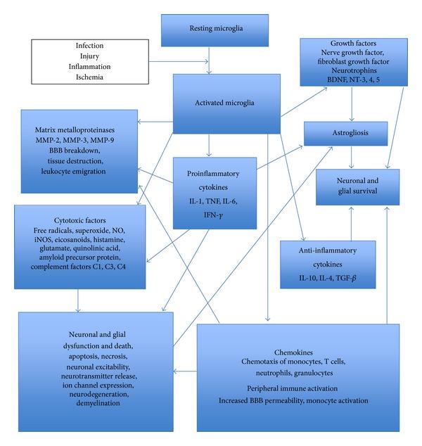 fig1 chemokines
